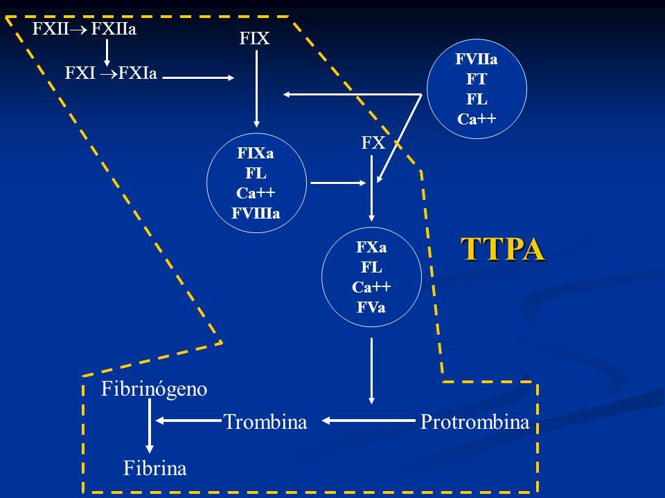 TTPA Fibrinógeno Trombina Protrombina Fibrina FXII FXIIa FIX