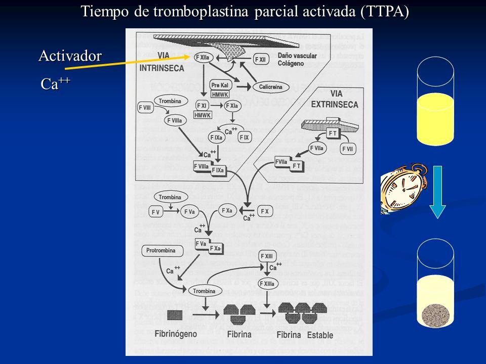 Tiempo de tromboplastina parcial activada (TTPA)