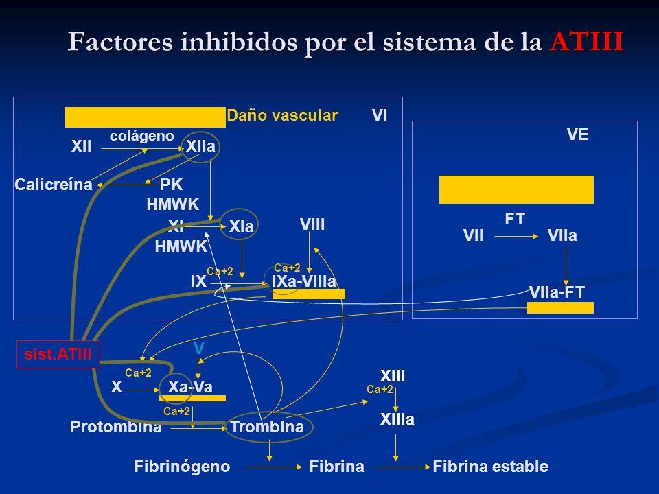 Factores inhibidos por el sistema de la ATIII