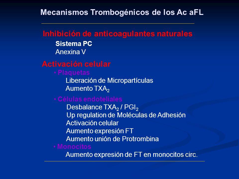 Mecanismos Trombogénicos de los Ac aFL