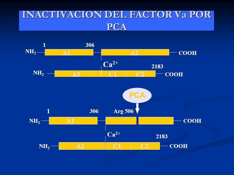 INACTIVACION DEL FACTOR Va POR PCA