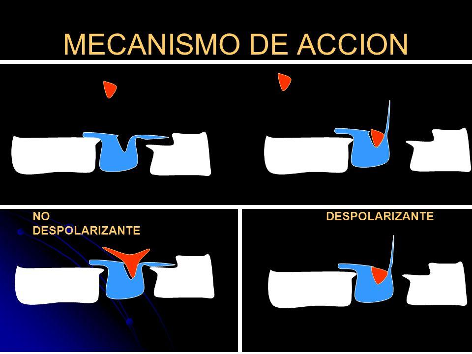 MECANISMO DE ACCION NO DESPOLARIZANTE DESPOLARIZANTE