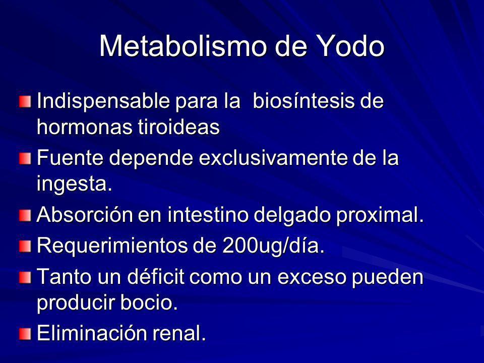 Metabolismo de Yodo Indispensable para la biosíntesis de hormonas tiroideas. Fuente depende exclusivamente de la ingesta.