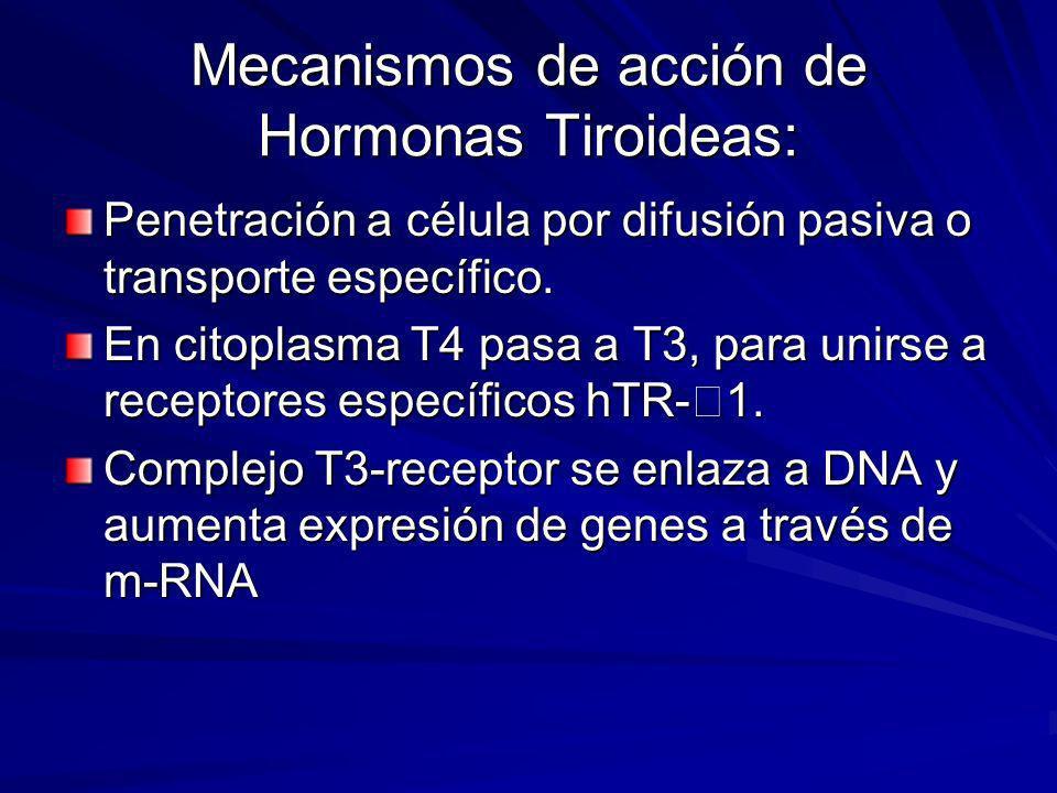 Mecanismos de acción de Hormonas Tiroideas: