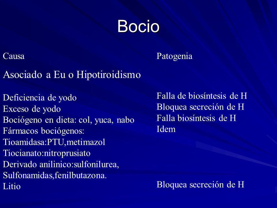 Bocio Asociado a Eu o Hipotiroidismo Causa Patogenia
