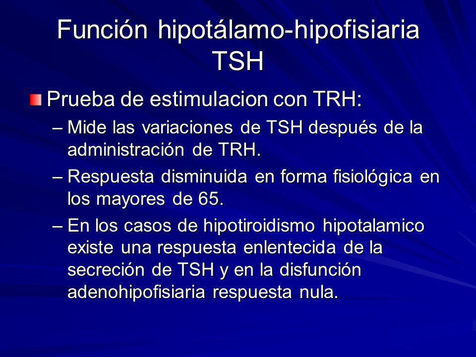 Función hipotálamo-hipofisiaria TSH
