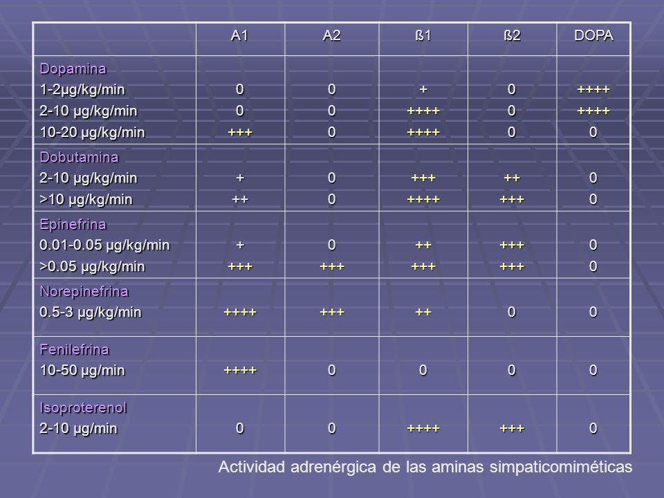 Actividad adrenérgica de las aminas simpaticomiméticas