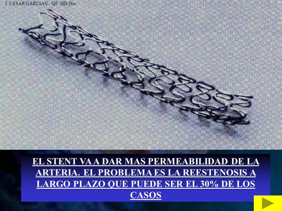 J. CESAR GARCIA C. QF MD Msc