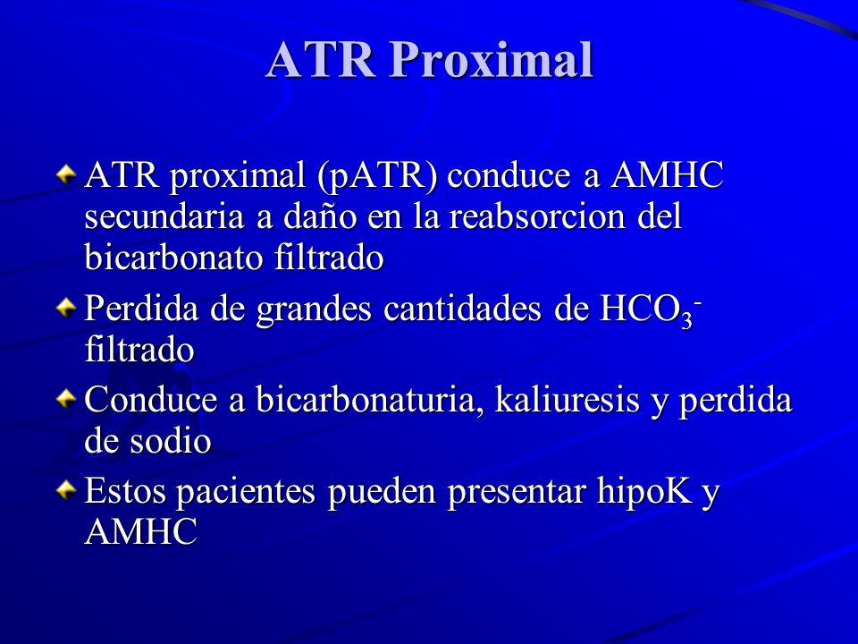 ATR Proximal ATR proximal (pATR) conduce a AMHC secundaria a daño en la reabsorcion del bicarbonato filtrado.