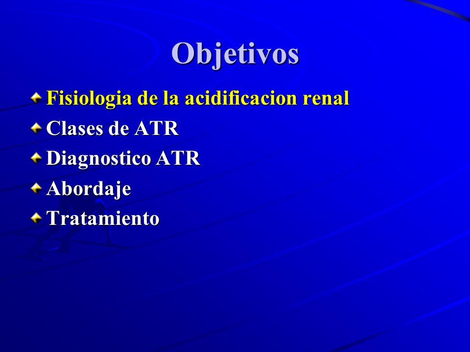 Objetivos Fisiologia de la acidificacion renal Clases de ATR