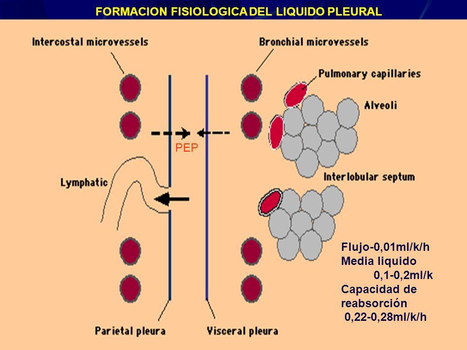 FORMACION FISIOLOGICA DEL LIQUIDO PLEURAL