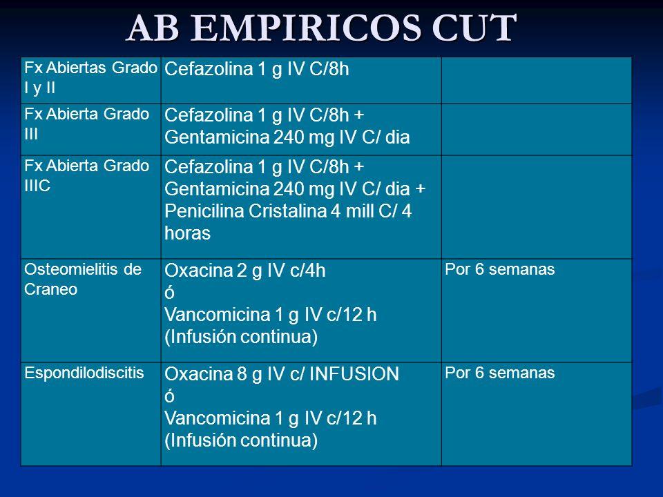 AB EMPIRICOS CUT Cefazolina 1 g IV C/8h