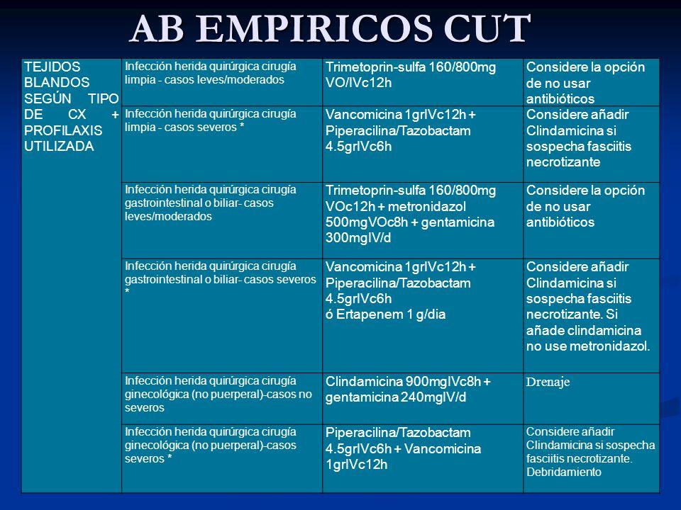AB EMPIRICOS CUT TEJIDOS BLANDOS