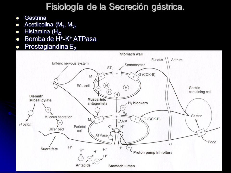 Fisiología de la Secreción gástrica.