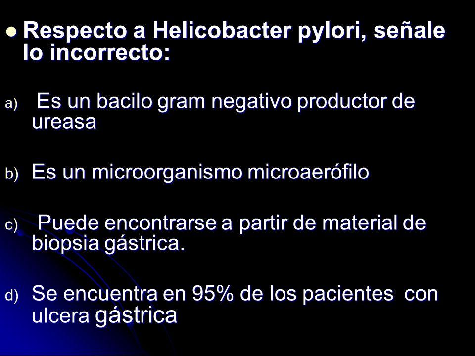 Respecto a Helicobacter pylori, señale lo incorrecto: