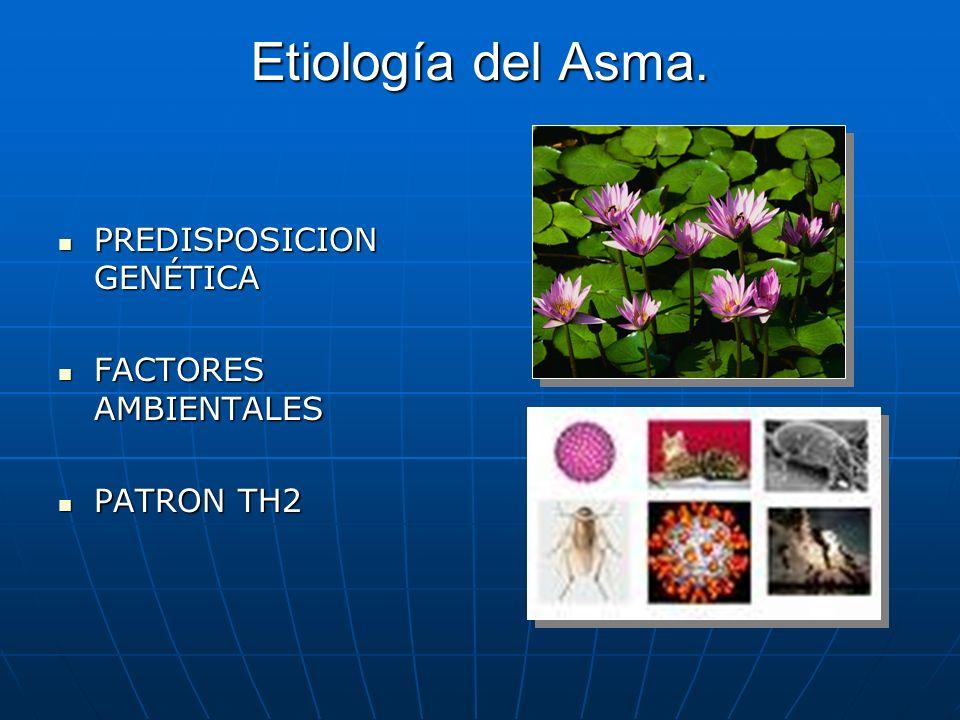 Etiología del Asma. PREDISPOSICION GENÉTICA FACTORES AMBIENTALES