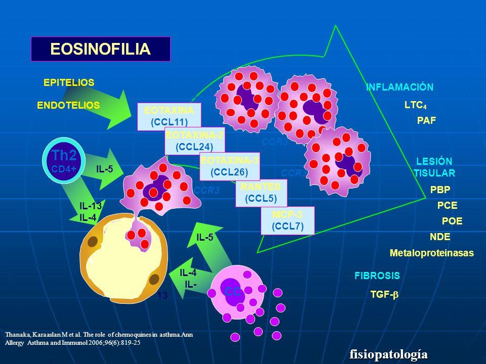 EOSINOFILIA Th2 fisiopatología CC EPITELIOS INFLAMACIÓN ENDOTELIOS