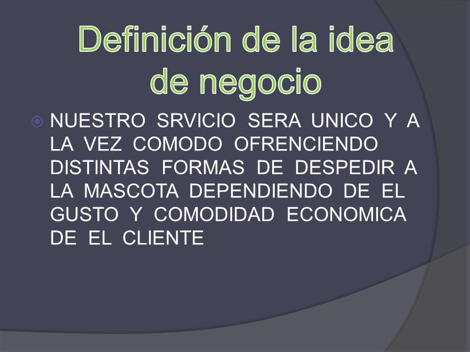 Definición de la idea de negocio