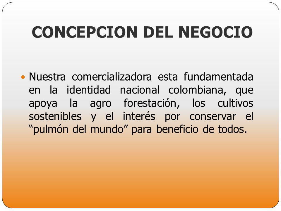 CONCEPCION DEL NEGOCIO