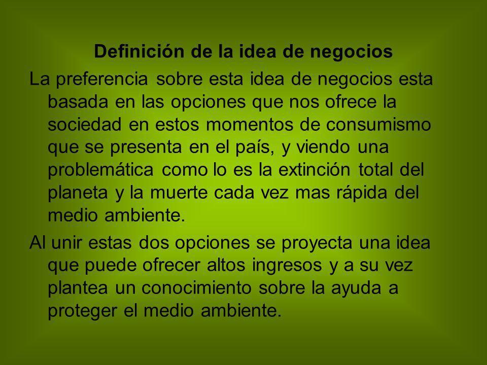 Definición de la idea de negocios