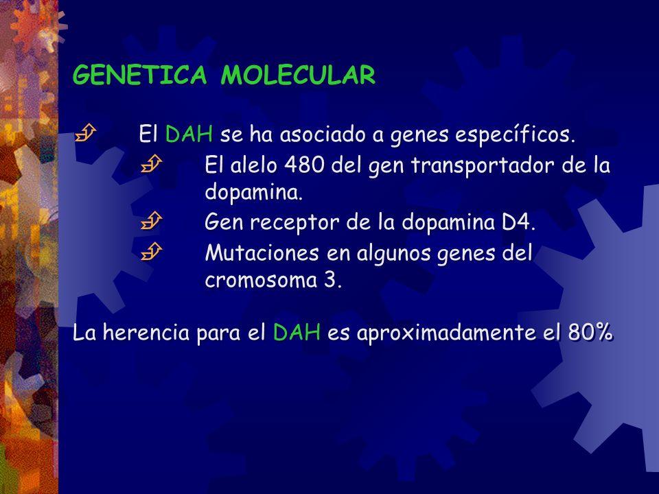  El DAH se ha asociado a genes específicos.