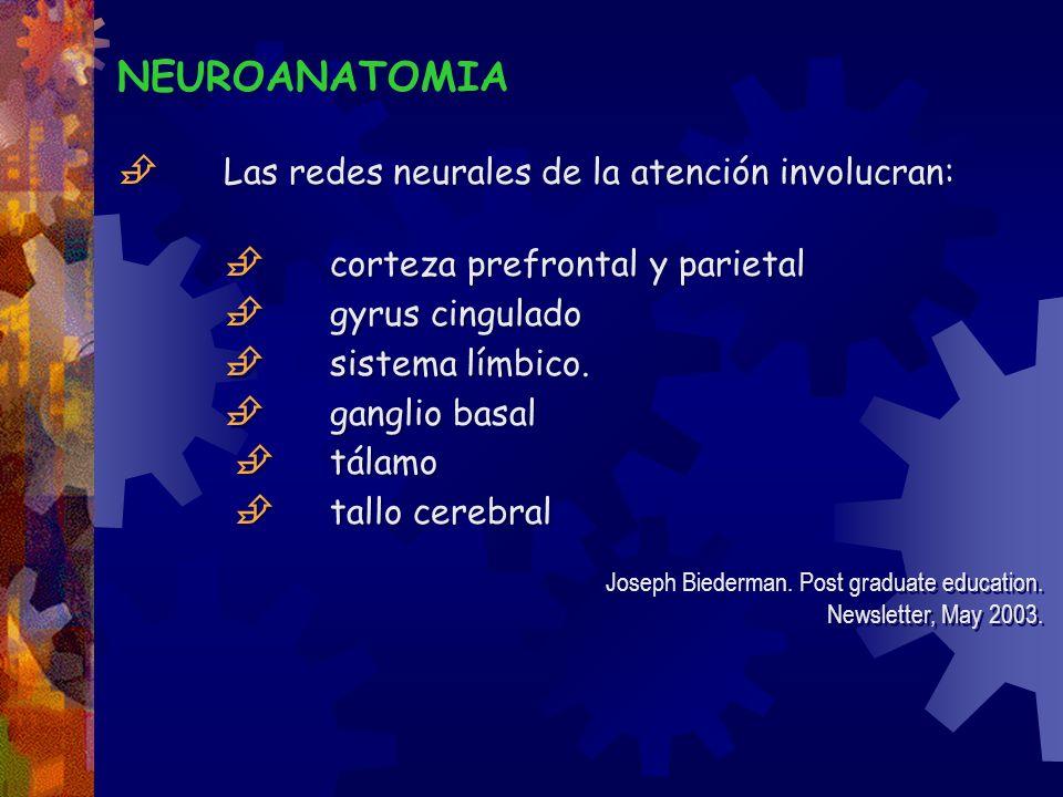  Las redes neurales de la atención involucran: