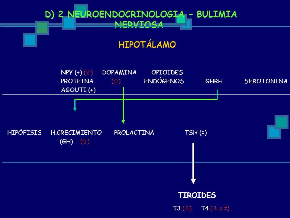 D) 2 NEUROENDOCRINOLOGIA – BULIMIA NERVIOSA