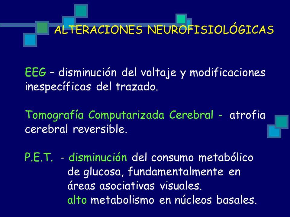Tomografía Computarizada Cerebral - atrofia cerebral reversible.