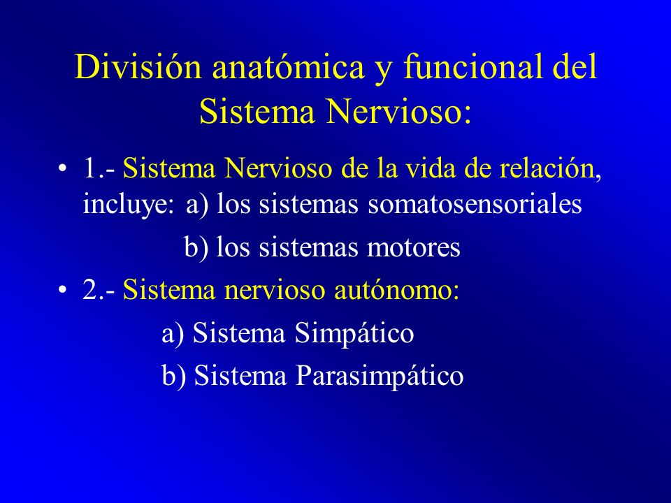 División anatómica y funcional del Sistema Nervioso:
