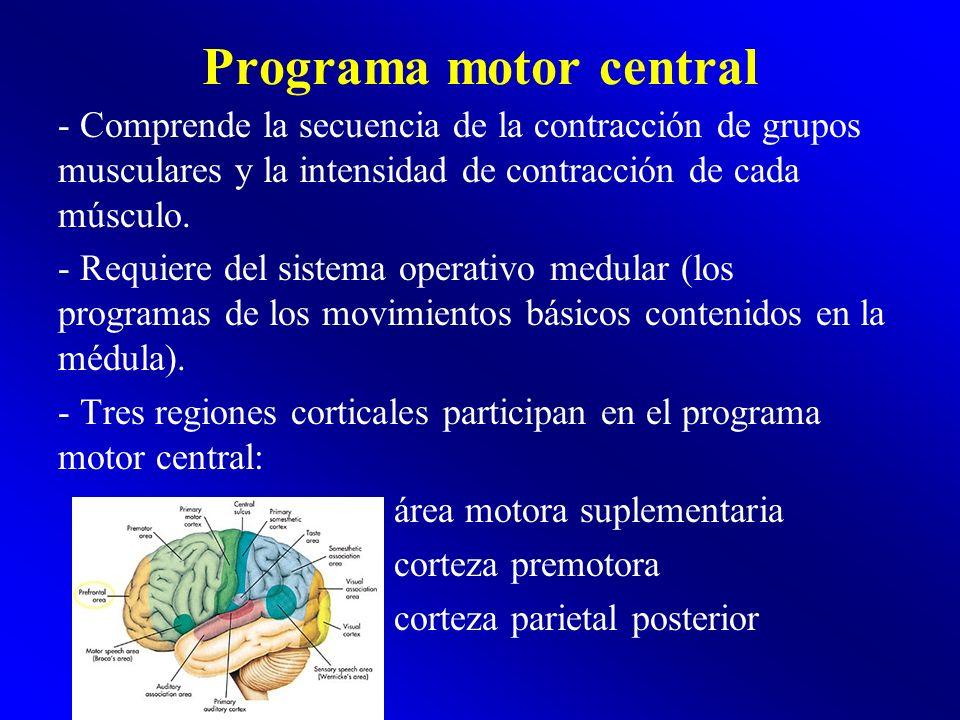 Programa motor central
