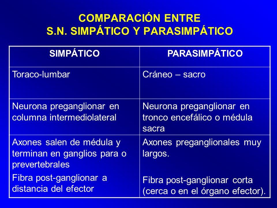 COMPARACIÓN ENTRE S.N. SIMPÁTICO Y PARASIMPÁTICO