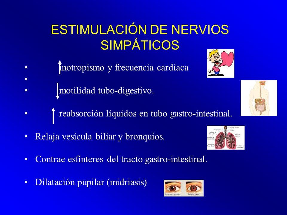 ESTIMULACIÓN DE NERVIOS SIMPÁTICOS