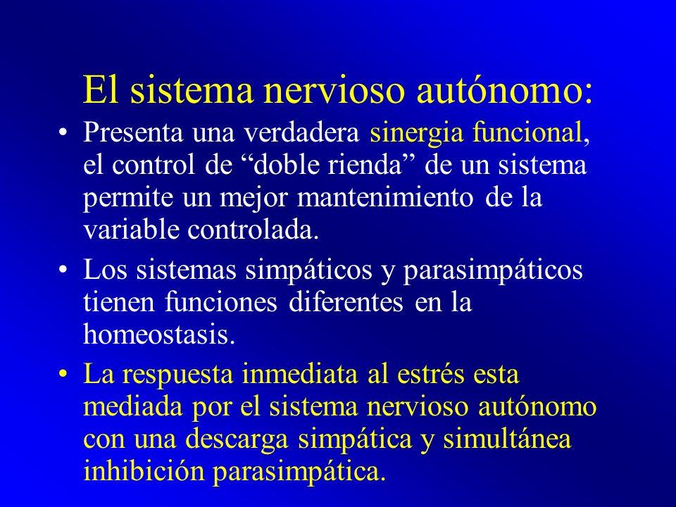 El sistema nervioso autónomo: