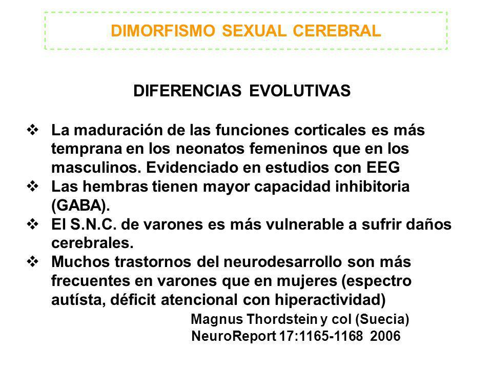 DIMORFISMO SEXUAL CEREBRAL DIFERENCIAS EVOLUTIVAS