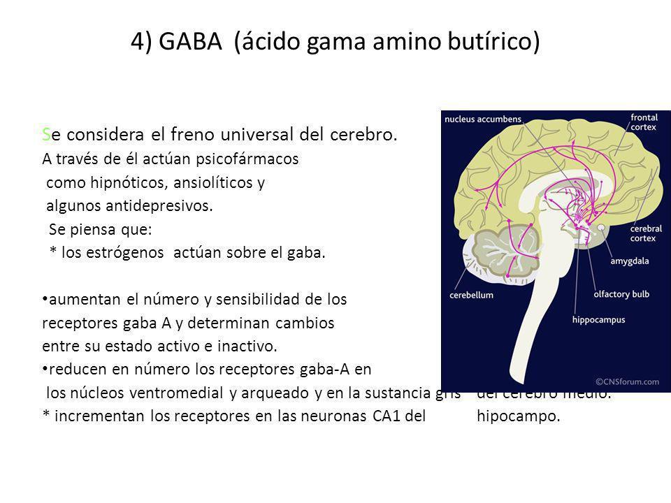 4) GABA (ácido gama amino butírico)