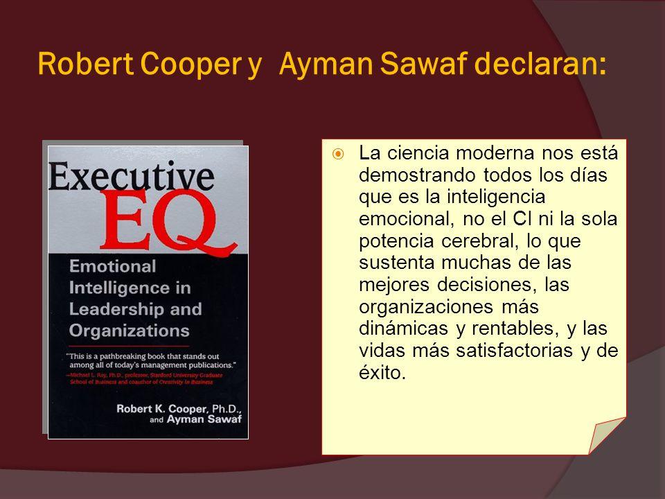 Robert Cooper y Ayman Sawaf declaran: