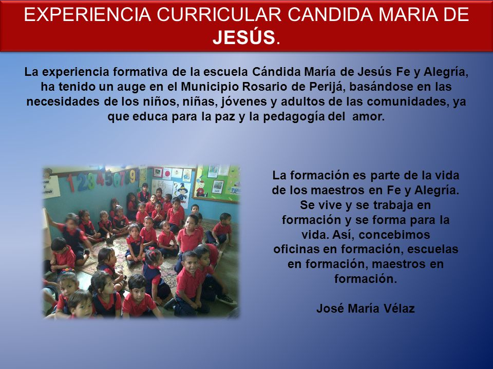 EXPERIENCIA CURRICULAR CANDIDA MARIA DE JESÚS.