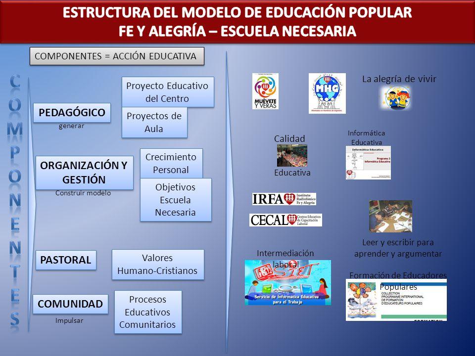 C O M P N E T S ESTRUCTURA DEL MODELO DE EDUCACIÓN POPULAR