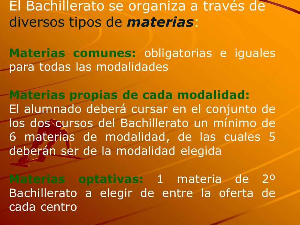 El Bachillerato se organiza a través de diversos tipos de materias: