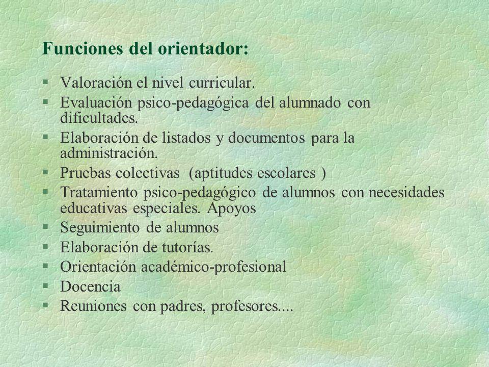 Funciones del orientador: