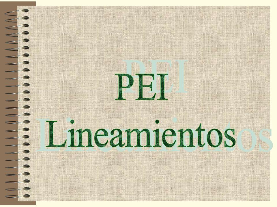 PEI Lineamientos
