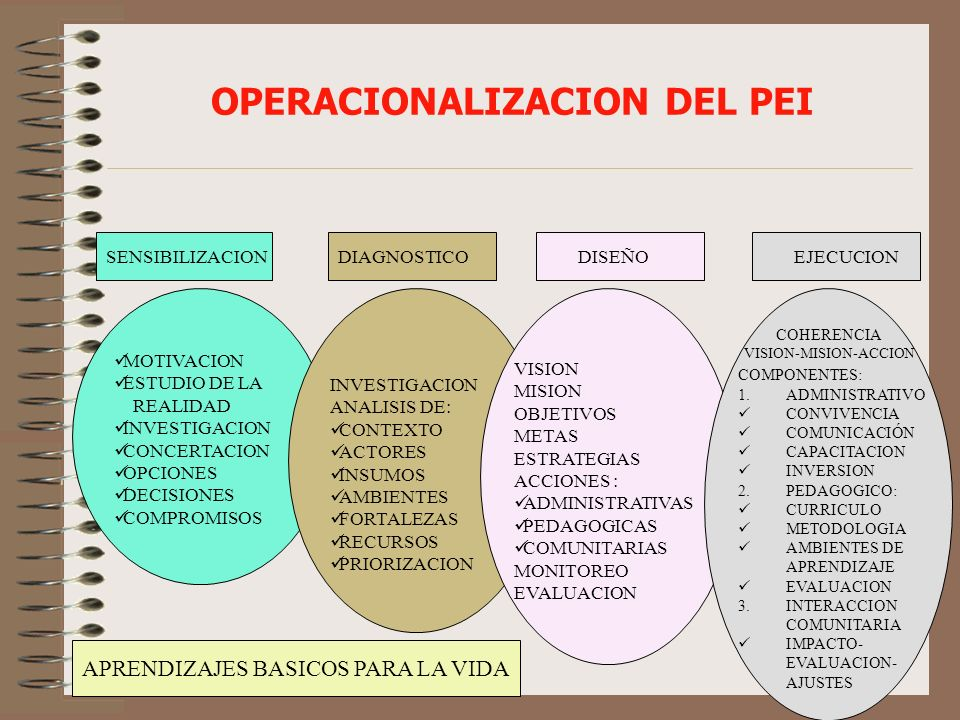 OPERACIONALIZACION DEL PEI