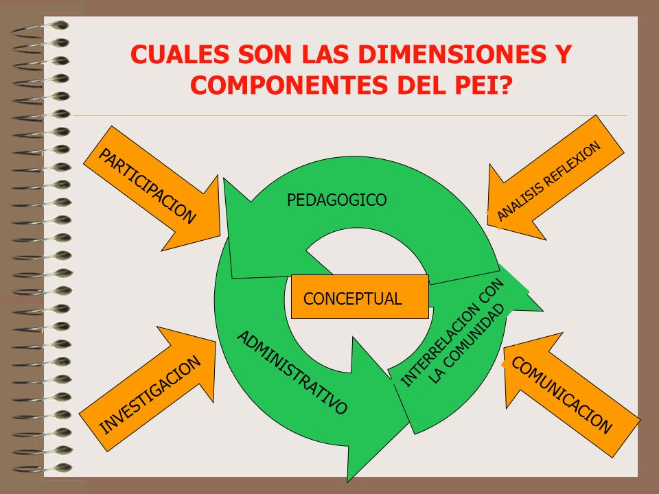 CUALES SON LAS DIMENSIONES Y COMPONENTES DEL PEI