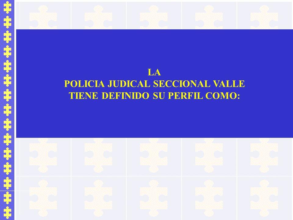 POLICIA JUDICAL SECCIONAL VALLE TIENE DEFINIDO SU PERFIL COMO: