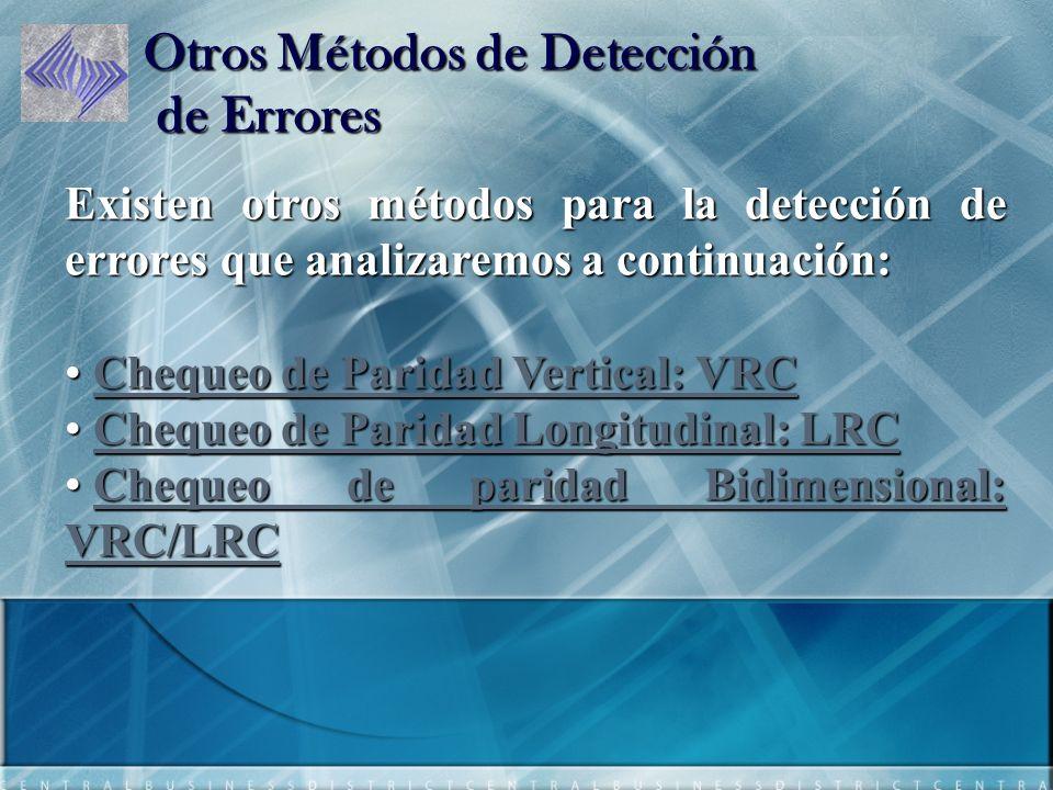Otros Métodos de Detección de Errores