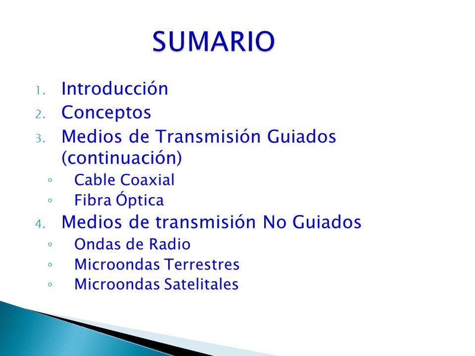 SUMARIO Introducción Conceptos