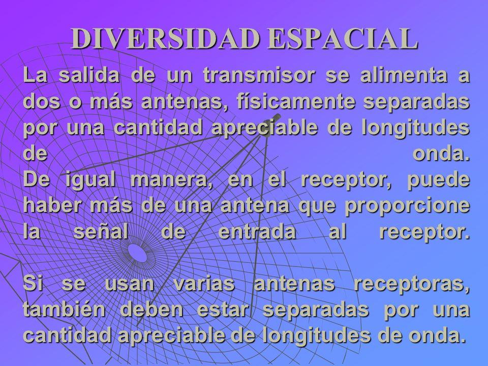 DIVERSIDAD ESPACIAL