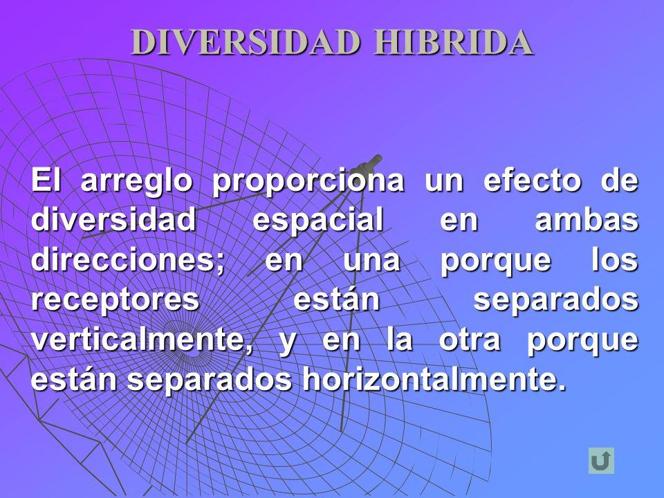 DIVERSIDAD HIBRIDA