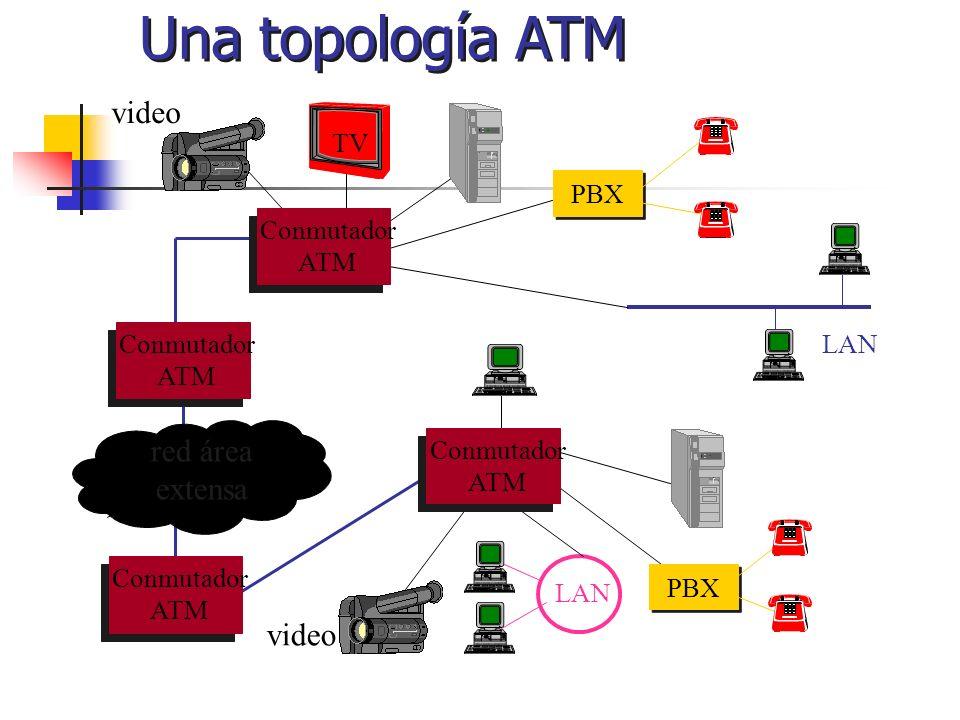 Una topología ATM LAN Conmutador ATM red área extensa PBX TV video