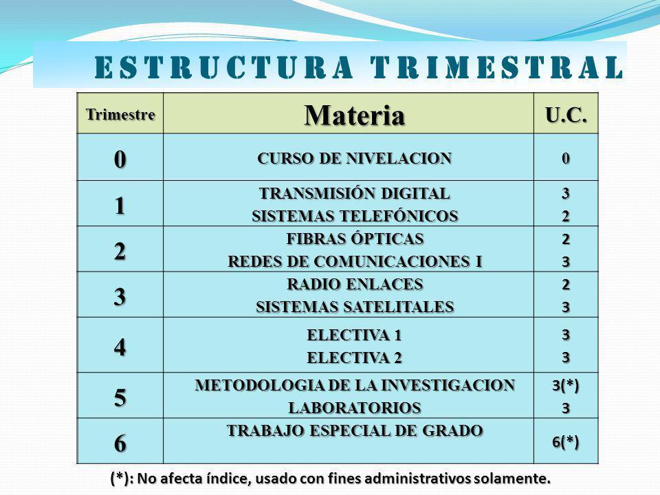 Estructura trimestral